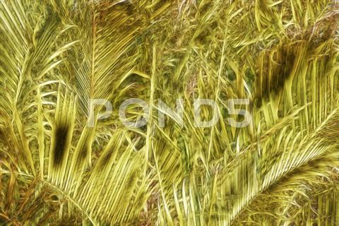 Stock Illustration of abstract yellow and green palm tree leaves