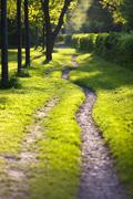 Sunlit and ethereal path - stock photo