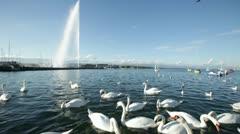 Geneva - Lake Stock Footage