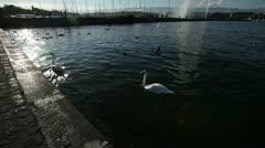 Stock Video Footage of Geneva - Lake