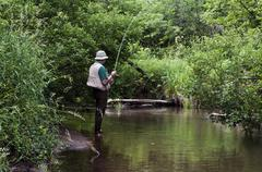 stream fishing - stock photo