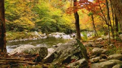 Fly fisherman autumn stream long shot Stock Footage