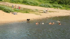 People having rest on bank of river of Vologda, bathing in water Stock Footage