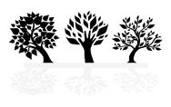 Set of tree silhouettes Stock Illustration