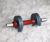 Dumbbell and down feathers Stock Photos