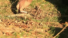Bushcraft (starting a fire) _2 Stock Footage