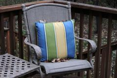 Patio chair and pillow in autumn - stock photo