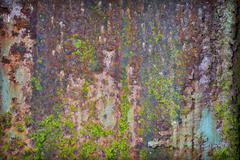 grunge rusty iron with pieces of paint and moss - stock photo