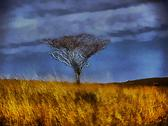 Stock Illustration of 3d bare tree in open grassland