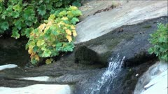 Little Waterfall on Rock Creek in Sierra Nevada Mountains, California Stock Footage