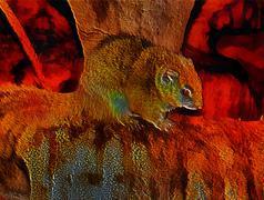 3d fantasy illustration of african bush squirrel - stock illustration