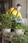Florist arranging fresh flowers on sunny flower market Stock Photos