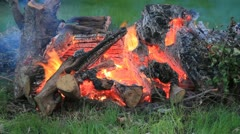 burning fire wood flame loop - stock footage