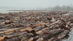Stock Video Footage of Fraser River Lumber. Wide shot.