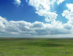 4K. Green field and cloudy sky Stock Footage