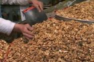 Iran 10 tehran market.  nuts for sale  Stock Footage