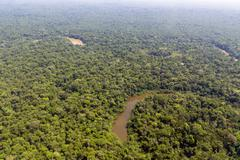 oxbow lake beside the  cononaco river in the ecuadorian amazon viewed from th - stock photo