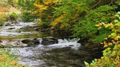 Scenic autumn rocky river Tennessee Stock Footage