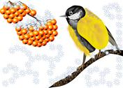 Bird and winter berries Stock Illustration