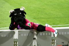 bulls mascot - stock photo
