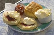 Stock Photo of Cream tea anyone?