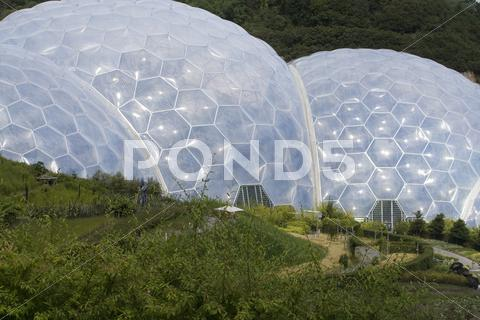 Stock photo of Biomes