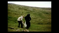 British Columbia preparing a sheep 1939 Stock Footage