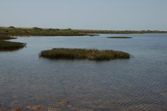 lake near the sea - stock photo