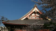 Stock Video Footage of Sensoji Temple in Tokyo, Japan, Asakusa Kannon Temple, Cherry Tree Blossom