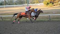 Horse race. Stock Footage