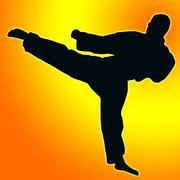 gold orange back sport silhouette - karate kick - stock illustration