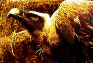 Image of flaming vulture from hell Stock Illustration