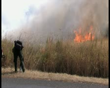 PAL Controlled Burn 20 Stock Footage