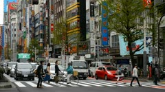 Day Traffic Crowds, Shinjuku Neon Sign Street, Shopping Area in Tokyo, Japan Stock Footage
