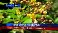 News Lower Third Pack - 7 Lower Thirds - stock after effects