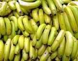 Bananas bunches Stock Photos