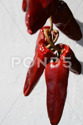 Stock photo of dry peppers bunch