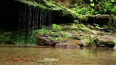Intimate Waterfall - water slowly dripping Stock Footage