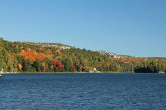 Foliage landscape with lake. Stock Photos