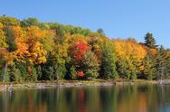 Trees reflecting on calm lake. Stock Photos