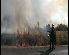 PAL Controlled Burn 26 Stock Footage