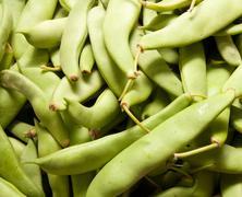Green a string bean as a background Stock Photos