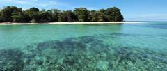 Trooppinen saari panoraama Kuvituskuvat