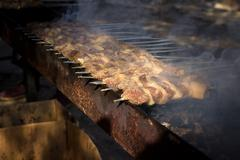 Appetizing fresh meat shish kebab (shashlik) prepared on a grill wood coal, o Stock Photos