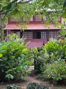 Stock Photo of house and tropical plants