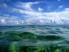 snorkeling - stock photo