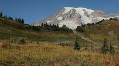 Pan of Rainier and Open Country Stock Footage
