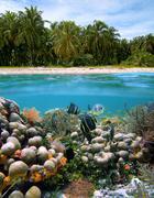 Idyllic beach for free-diving Stock Photos