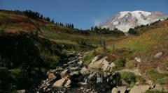 Pan of Stream at Foot of Mount Rainier Stock Footage