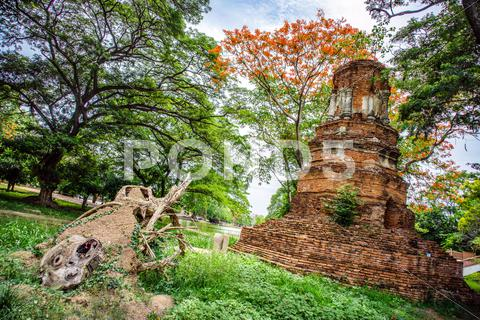 Stock photo of Ancient Thai ruins in Ayutthaya